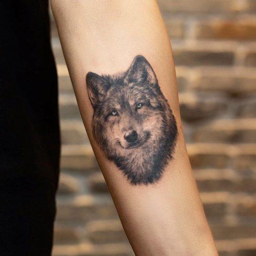 קעקוע זאב